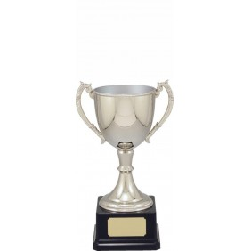 Metal Trophy Cups VT11-2 - Trophy Land