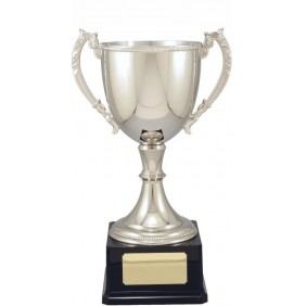 Metal Trophy Cups VT16-2 - Trophy Land