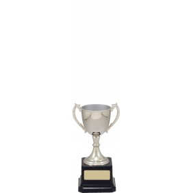 Metal Trophy Cups VT7-2 - Trophy Land