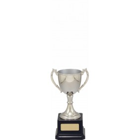 Metal Trophy Cups VT8-2 - Trophy Land