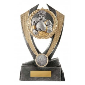 Boxing Trophy W18-3412 - Trophy Land