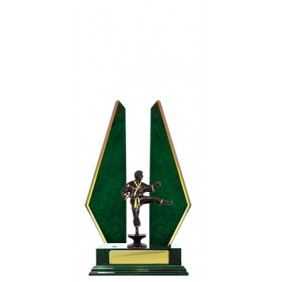 Martial Arts Trophy W18-3501 - Trophy Land