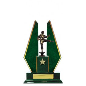 Martial Arts Trophy W18-3503 - Trophy Land