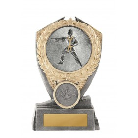 Martial Arts Trophy W18-3608 - Trophy Land
