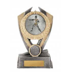 Martial Arts Trophy W18-3609 - Trophy Land