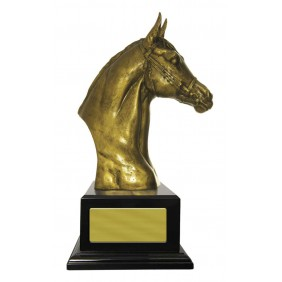 Equestrian Trophy W18-5606 - Trophy Land