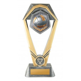 Volleyball Trophy W21-11023 - Trophy Land