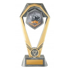 Boxing Trophy W21-7908 - Trophy Land
