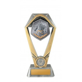 Martial Arts Trophy W21-8207 - Trophy Land