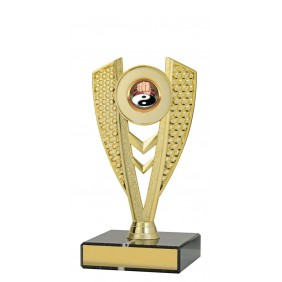 Martial Arts Trophy X1019 - Trophy Land