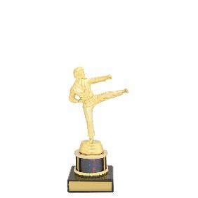 Martial Arts Trophy X1139 - Trophy Land