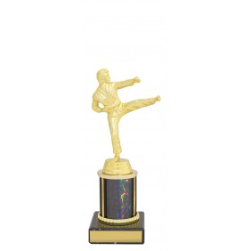 Martial Arts Trophy X1140 - Trophy Land