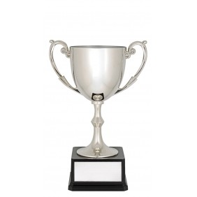 Metal Trophy Cups X1521 - Trophy Land