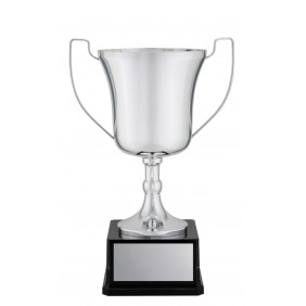 Metal Trophy Cups X1545 - Trophy Land
