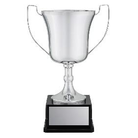 Metal Trophy Cups X1546 - Trophy Land