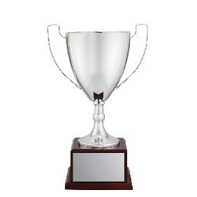 Metal Trophy Cups X1549 - Trophy Land