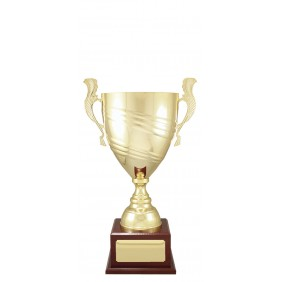 Metal Trophy Cups X1567 - Trophy Land