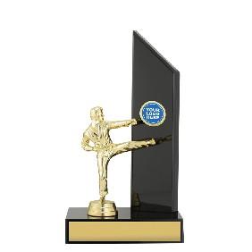 Martial Arts Trophy X1644 - Trophy Land