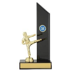 Martial Arts Trophy X1645 - Trophy Land