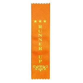 Place Ribbons Z08 - Trophy Land